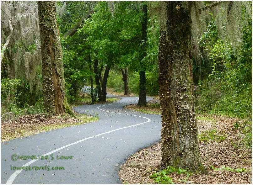 Gulf Oak Ridge Trail, Hugh S Branyon Trails