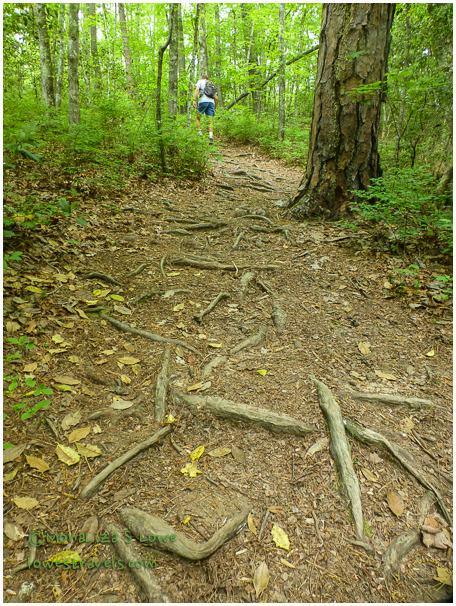 Desoto Hiking Trail