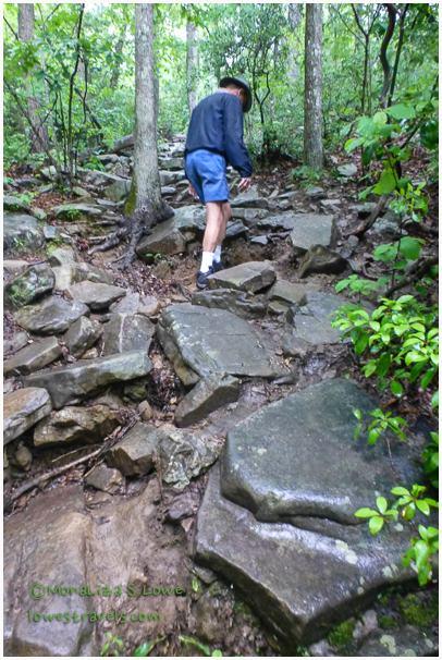 Trail at Marthas Falls
