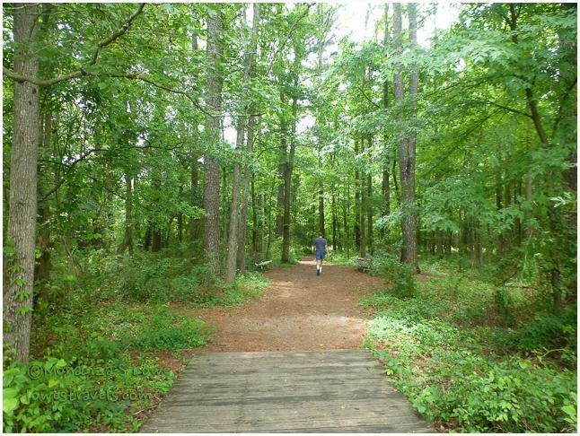 James D Martin Wildlife Park