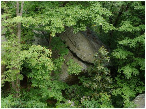 Rock City Formation