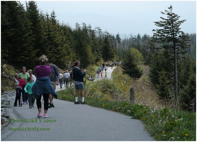 Clingman's Dome Trail