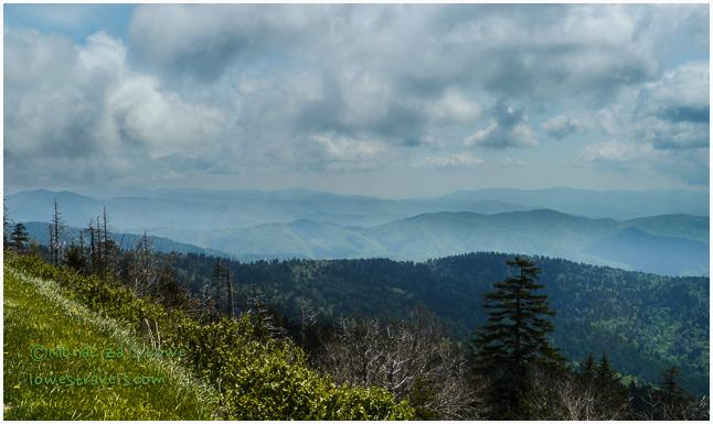Great Smoky Mountains, southern view