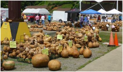 Gourd shells