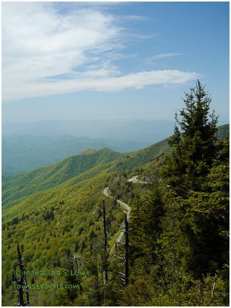 Blue Ridge Mountain, Waterrock Knob trail