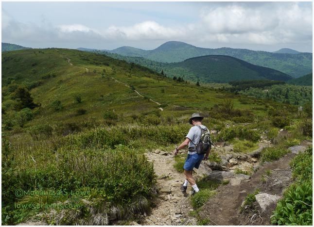 Black Balsam Trail
