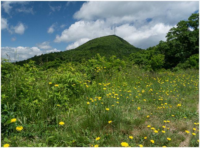 Mount Pisgah