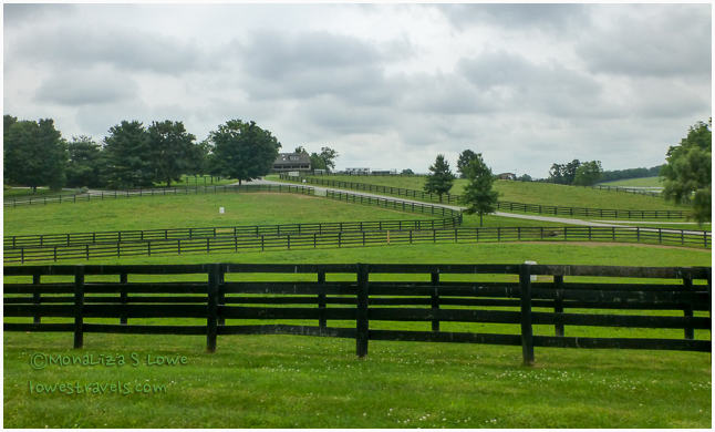 Winstar Farms, Bluegrass Region, KY