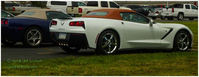 Stingray Corvette