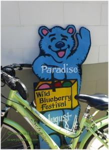 Wild blueberry festival