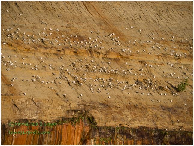 Gull Rockery, Pictured Rocks