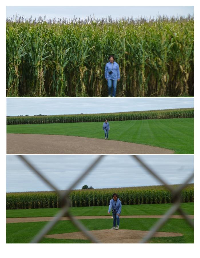 Fields of Dreams, Iowa