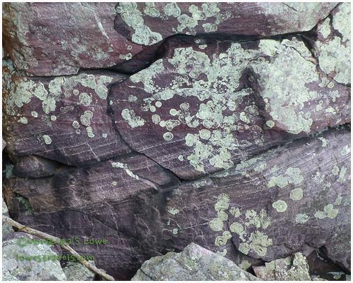 Baraboo Quartzite