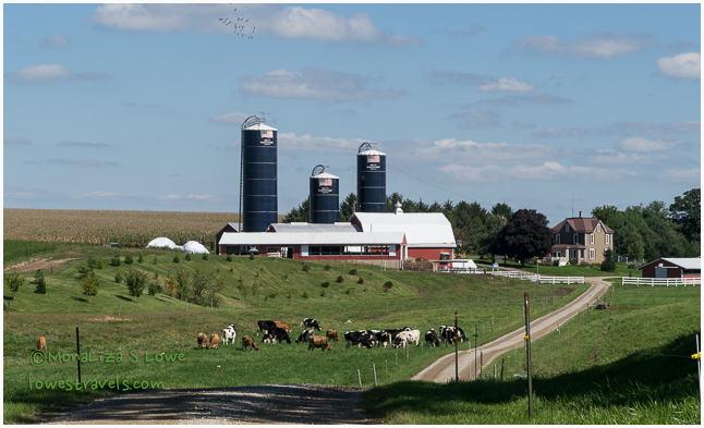 Joe and Deb Brant Farms