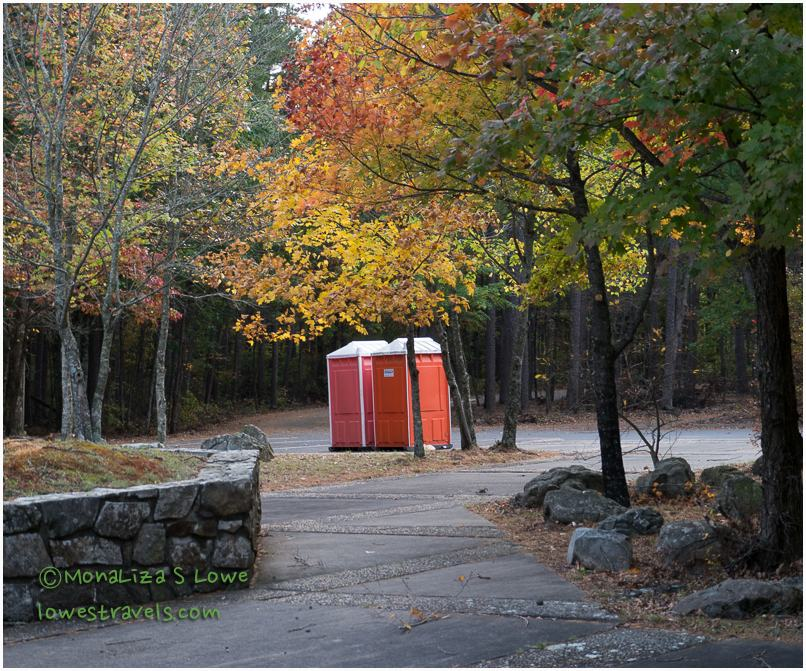 Porta-potties displaying their fall colors