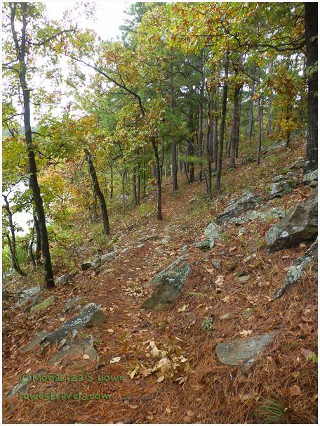 The pretty trail at Cedar Lake
