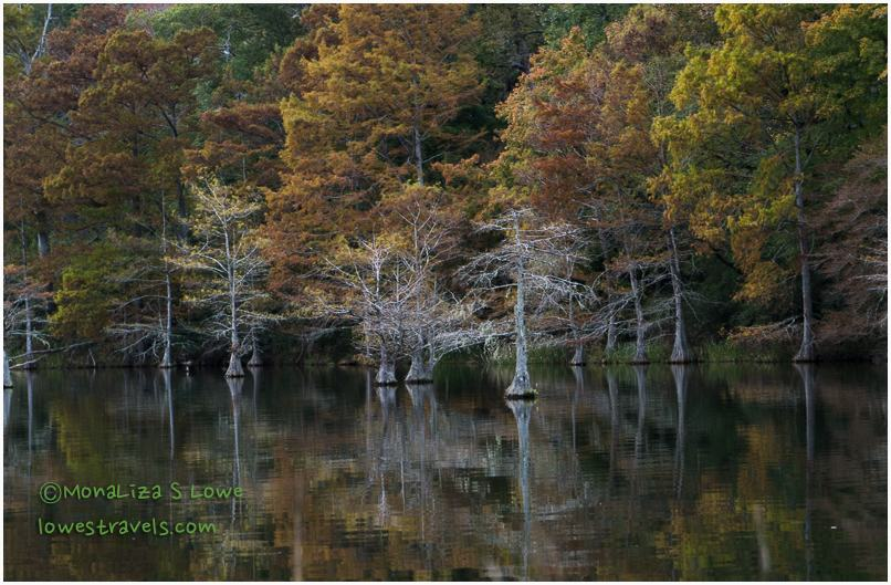 Mountain Fork River, Beavers Bend State Park
