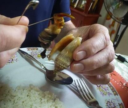How to eat sea shells