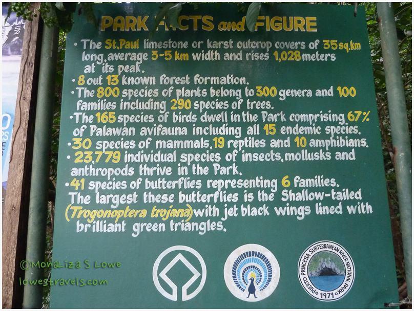 Puerto Princesa Jungle Trail