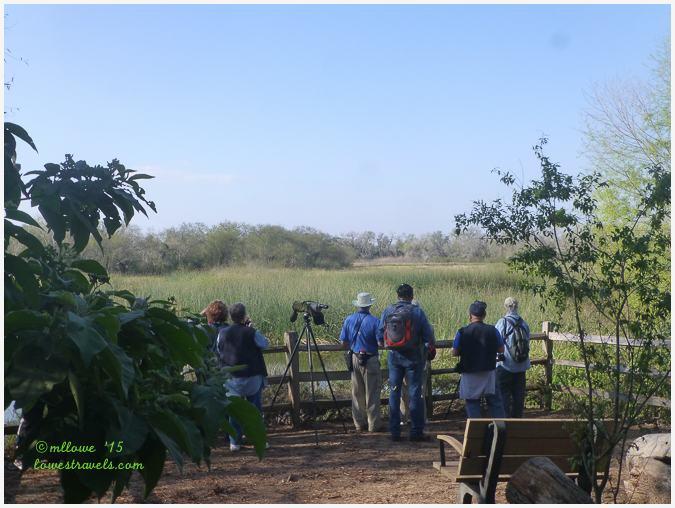 Santa Ana Wildlife Refuge