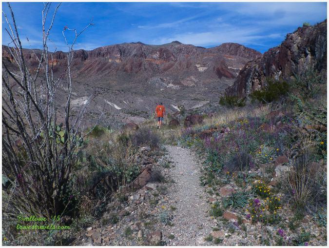 Burro Mesa Pour Off Trail