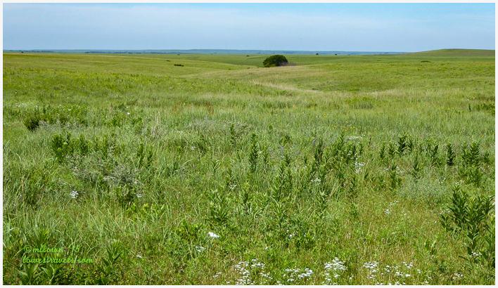 Tallgrass Prairie National Preserve