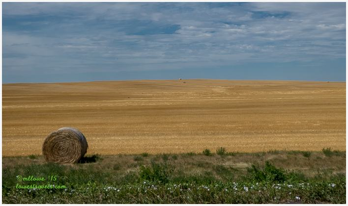 Wheat Farm along Enchanted Highway, ND