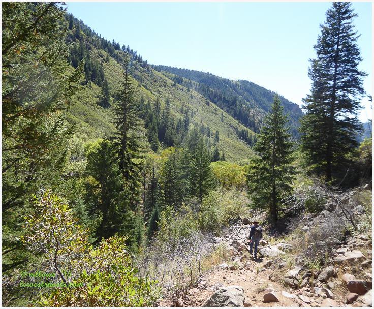 Jess Weaver Trail