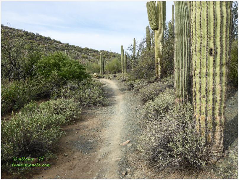 Slate Trail