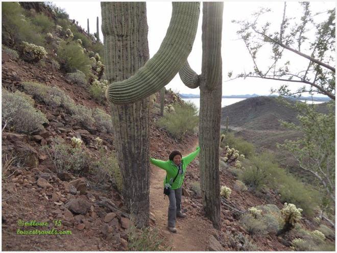 Yavapai Trail