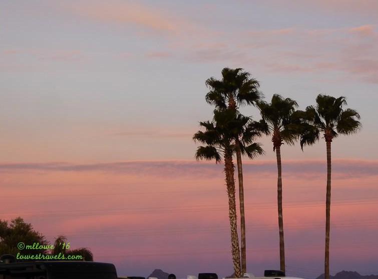 Winter Break For Betsy Tucson Az Lowes Travels