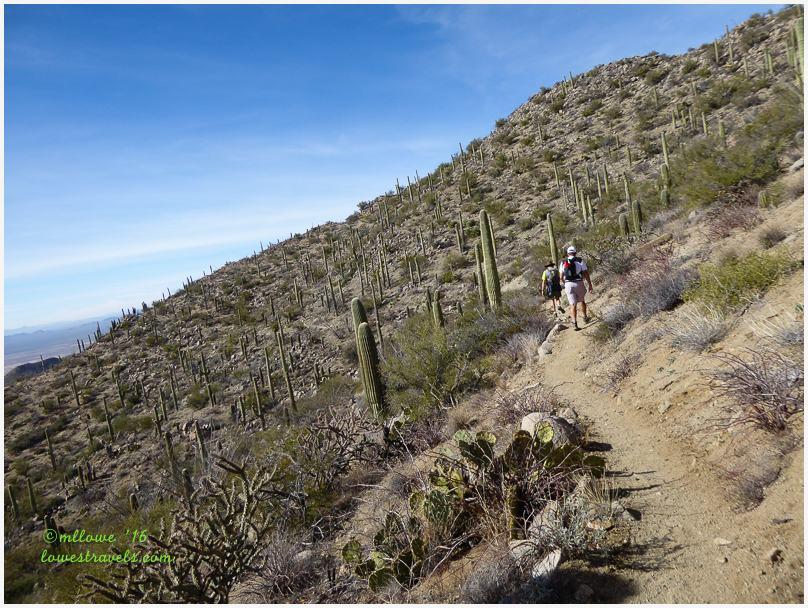 Hugh Norris Trail