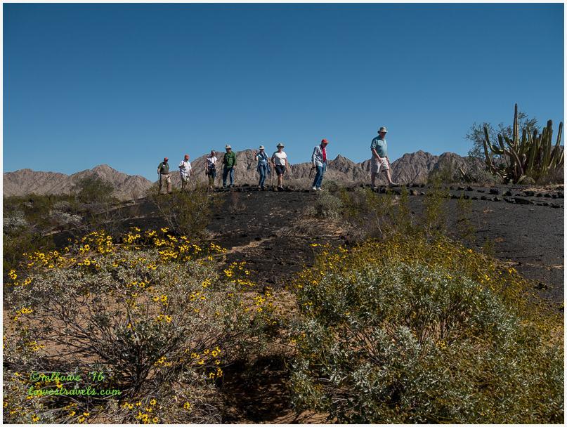 El Pinacate Trail