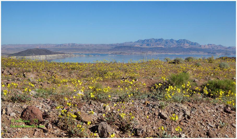 Boulder Basin, Lake Mead