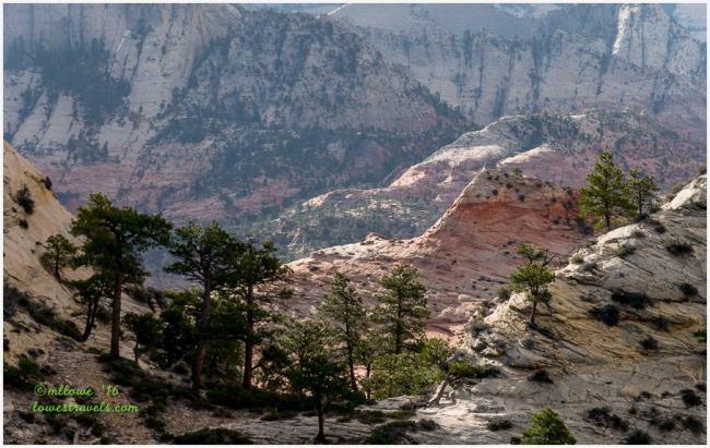 Northgate peaks trail