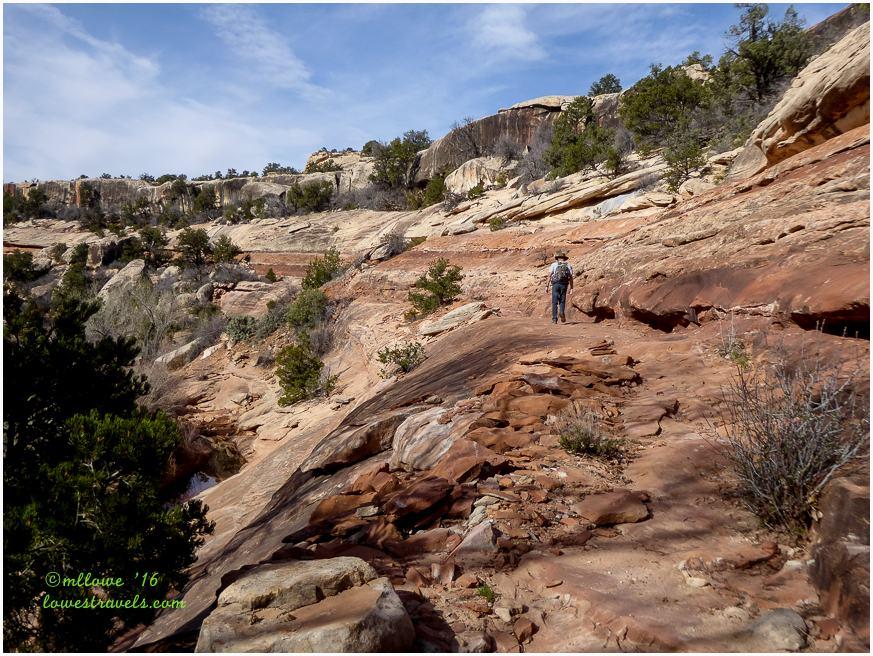 Kane gulch trail