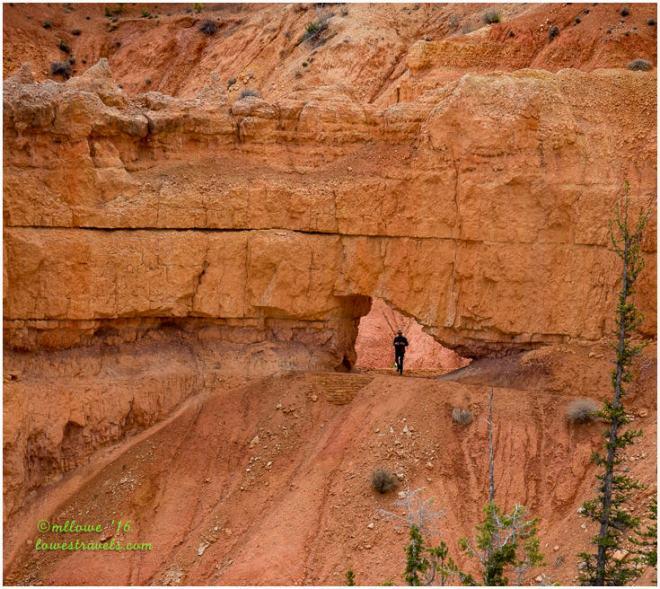 Under the Rim Trail