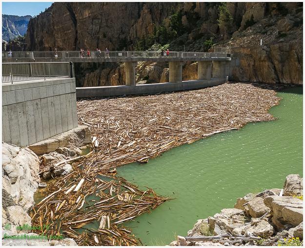 Buffalo Bill Dam