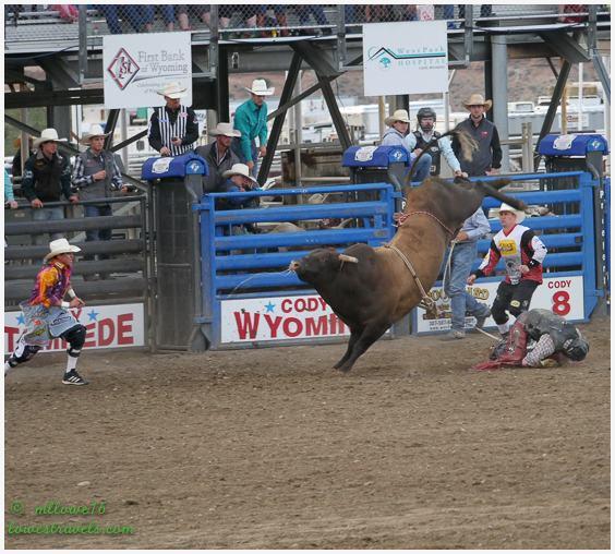 Cody Rodeo