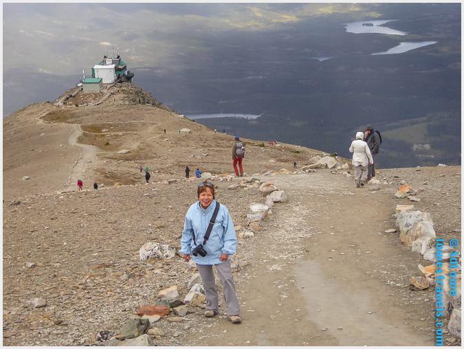 Whistler Summit Trail