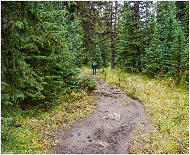 Mary Schaffer Loop Trail