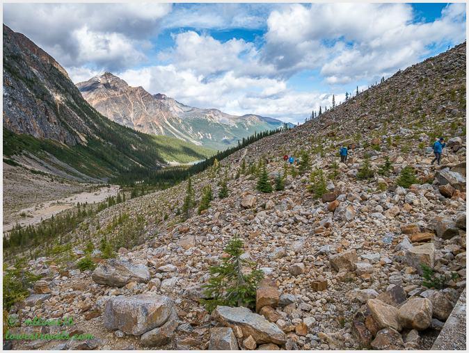 Path to Glacier Trail
