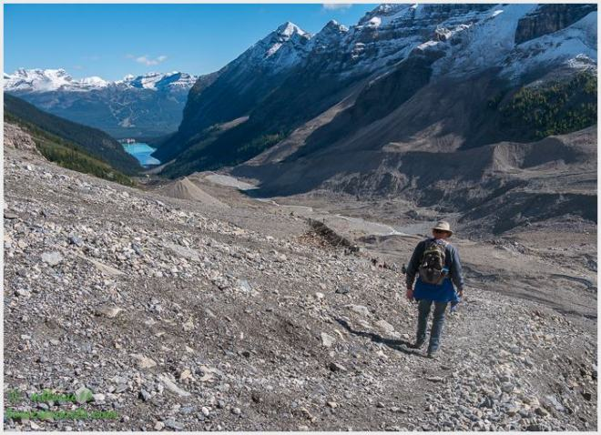 Plain of Six Glaciers Trail
