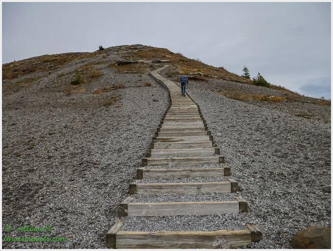 Windy Ridge Trail