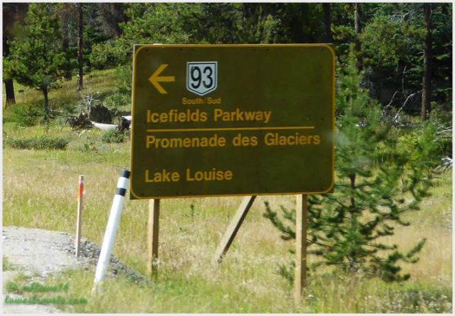 Ice field Parkway