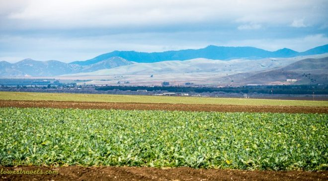 "Salinas Valley ""the Salad Bowl of the World"""