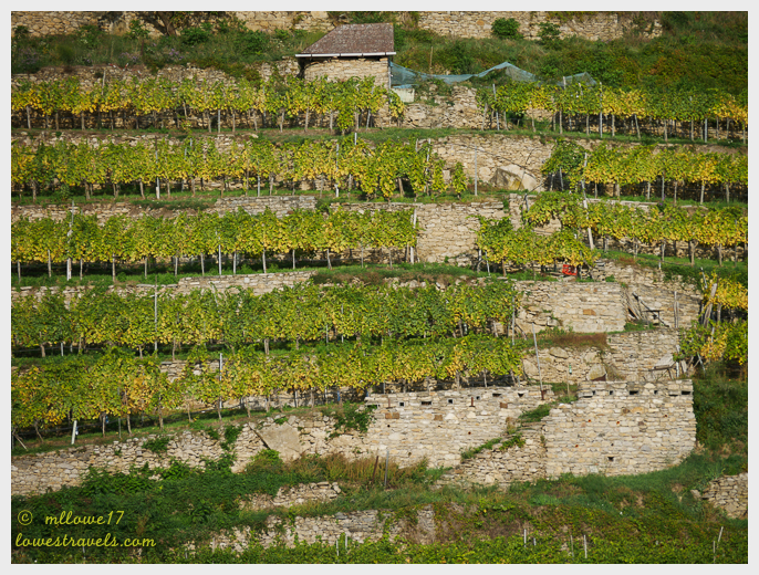 Wachau landscape.