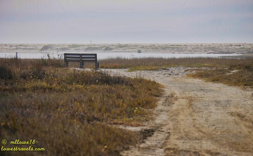 Tijuana Slough Wildlife Refuge