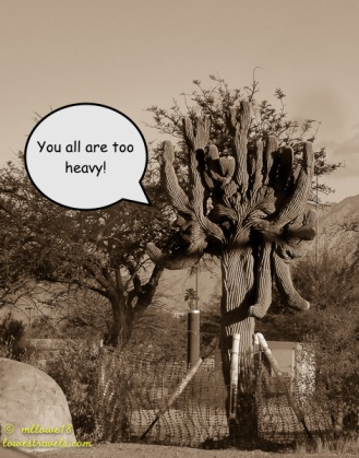 You all are too heavy