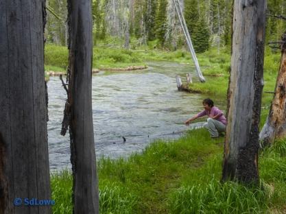 Touching Fishhook Creek
